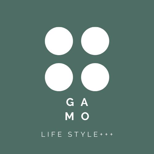 GAMO STYLE+++